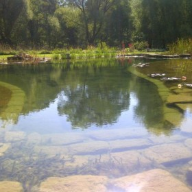 Pool, River and Dipping Pond